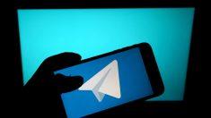 Aplicativo de mensagens Telegram no topo da lista global de downloads