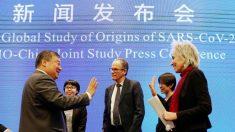 Críticos chineses consideram análise de Wuhan pela OMS uma 'farsa'
