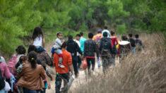 Espera-se que mais de um milhão de imigrantes ilegais cruzem a fronteira em 2021, diz Oficial