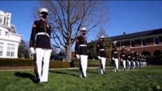 Cerca de 40% dos fuzileiros navais americanos se recusam a receber a vacina COVID-19, diz oficial