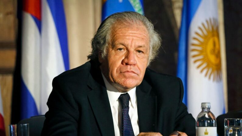 El Salvador pode seguir o mesmo caminho de Cuba, Venezuela, Nicarágua e Bolívia, diz OEA