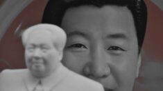 Líder chinês fortalece seu poder com rede de institutos que ensinam 'pensamento de Xi Jinping'
