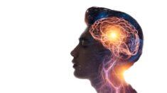 Proteja seu cérebro com essas substâncias naturais