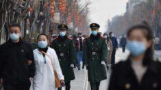 ONU não deve trabalhar com agência do PCC conhecida por violar direitos humanos, afirma grupo Safeguard