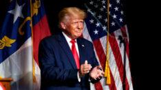 Trump apresenta Liz Harrington como sua nova porta-voz