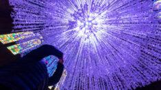 Artista apresenta 15.000 'Pombas da Paz' de papel suspensas no teto da Catedral de Liverpool