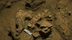Descoberta de restos mortais de 7.000 anos desvenda alguns mistérios de grupo desconhecido de seres humanos