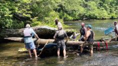 Arqueólogos encontram canoas nativas americanas esculpidas em 1700 em rio da Carolina do Sul
