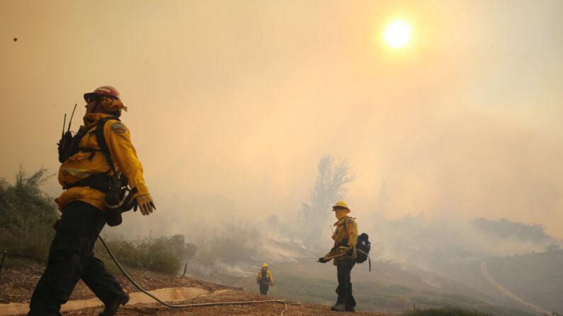 Estudo relaciona aumento de casos e mortes de COVID-19 com fumaça de incêndio florestal