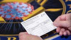 Devido a restrições para não vacinados falsos Cartões de Vacinação explodem, dizem pesquisadores