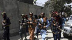 Talibã 'realiza caça humana porta a porta', afirma grupo de inteligência