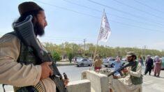 Talibã anuncia anistia e diz que mulheres podem trabalhar e ir à universidade