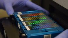 Cooperação científica e médica com a colheita antiética de genes na China deve ser proibida, propõem cientistas