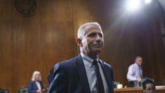 Documentos recém-divulgados mostram que Fauci mentiu: senador Paul