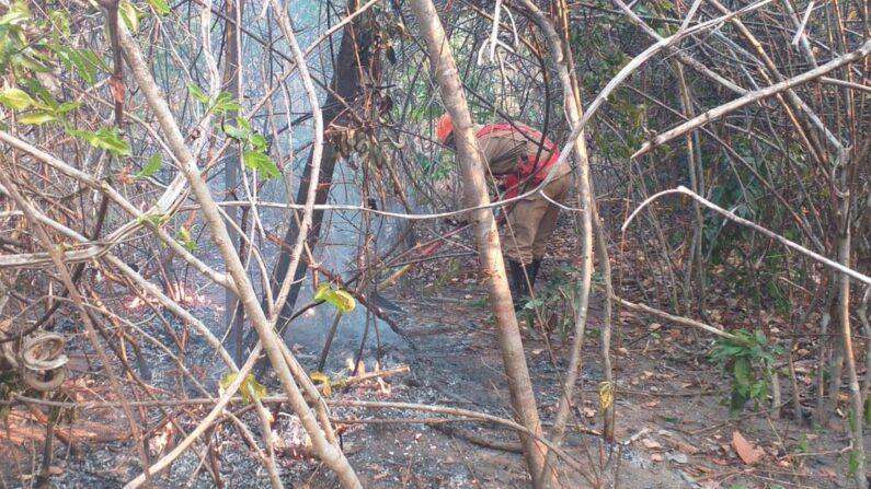 Incêndio na Chapada dos Veadeiros mobiliza mais de 150 profissionais