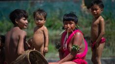 MPF vai investigar morte de crianças indígenas sugadas por draga