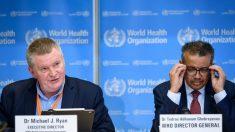 OMS mostra preocupação com evolução da pandemia em Brasil e Peru
