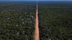 Governo publica edital para pavimentação da BR-319, no Amazonas