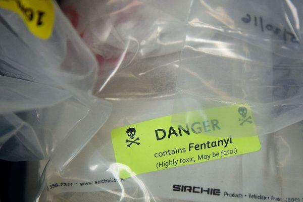 Sacos de heroína, alguns com fentanil, estão em exibição antes de uma conferência de imprensa sobre uma grande operação antidrogas, no escritório da Procuradoria Geral de Nova Iorque em 23 de setembro de 2016 na cidade de Nova Iorque (Drew Angerer / Getty Images)
