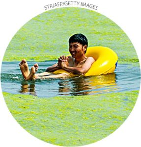Um homem flutua na água cheia de crescimento anormal de algas, provavelmente devido à poluição em uma praia em Qingdao, província chinesa de Shandong, em 15 de julho de 2015.