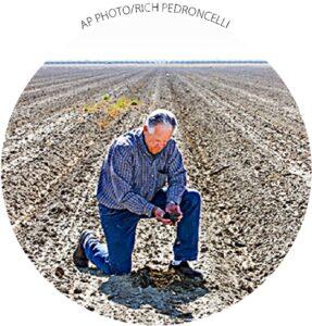 Mike Stearns, presidente da Autoridade de Água de San Luis e Delta-Mendota, verifica os níveis de umidade do solo perto de Firebaugh, Califórnia, em 25 de fevereiro. Stearns teve que pousar milhares de hectares devido aos cortes de água.